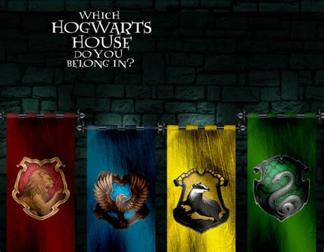 Which Hogwarts House Do You Belong In? | Harry potter